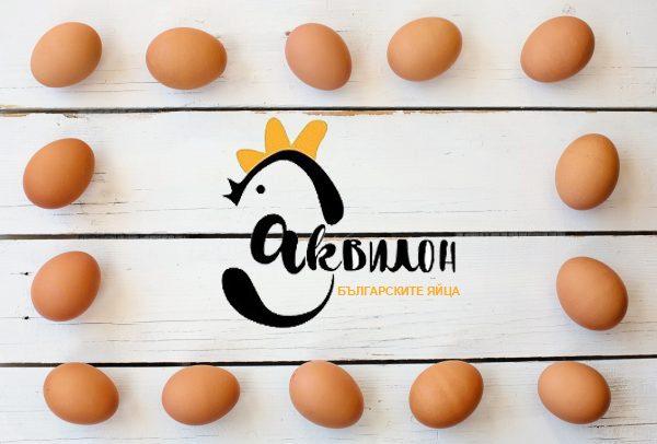http://en.akvilon-am.com/wp-content/uploads/2018/05/egg-3217673_1920-600x406-1-600x406.jpg